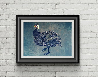 Guinea Fowl - poster print (A3)