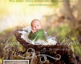 Instant download Prop Digital Newborn Photography studio ( Nest Nature ) high resolution digital file