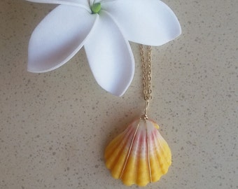 Hawaiian Sunrise Necklace.Wire wrapped sunrise shell pendant in gold.Comes with a 16 inch gold chain.Quarter size perfect condition shell.