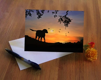Your Choice of 10 Greeting Cards