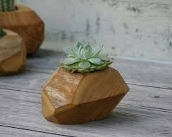 R&A Reclaimed Wood Succulent Planters by RJ Smith
