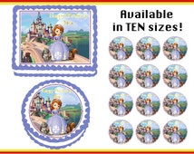 Sofia the First Edible Birthday  Cake Cupcake Cookie Topper Party Decoration Icing Sheets
