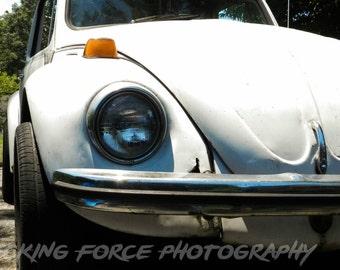 Volkswagen Bug 5x7 Print