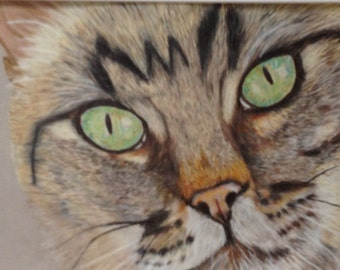 Cat portrait, custom cat portrait, pet portrait
