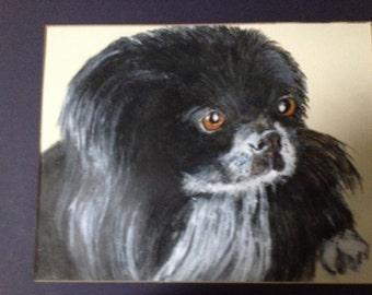 Custom dog pet portrait, sample 9x12