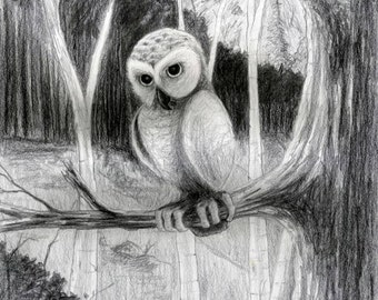 """Owl in the Forest at Dusk - Giclee Print 8""""x10"""""""
