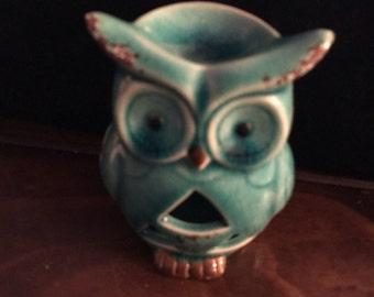Blue owl warmer