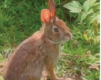 Bunny Blank Notecard