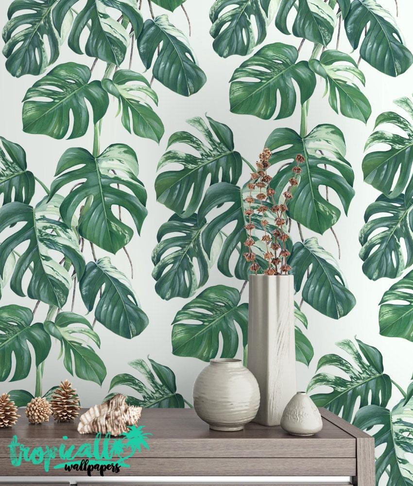 Printable Wallpaper: Monstera Leaves Print Wallpaper Removable Wallpaper