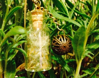 Vial of dandelion
