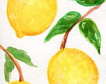 Lemons watercolor painting, lemon orchard 4 x 6 kitchen lemon watercolor painting, citrus fruit art, SharonFosterArt Farmhouse Decor