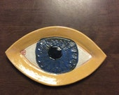11' by 6.5' eye dish with blue iris