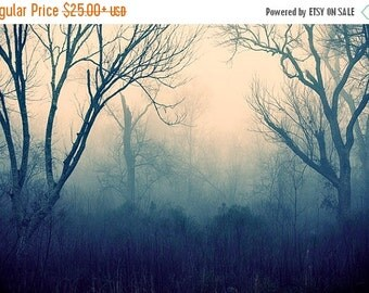 Summer Sale - Fog Photography, Foggy Nature Decor, Enchanted Forest, Fairytale Photography, Blue and Pink Wall Art, Dreamy Landscape Photogr