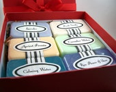 Valentines Gift, Last Minute Gift, Ready to Ship Spa Gift Set, Soap Gift Box, 6 Spa Themed Soaps