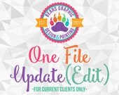 One File Update or Revision - Add-On for Current Design Clients Only