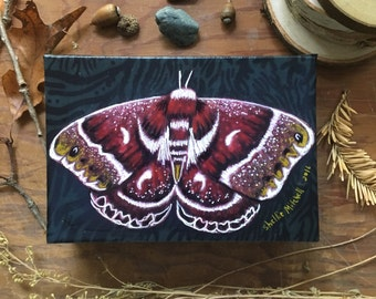 Silkworm moth, autumn decor, natural history, insect art, earth tones, fall colors, Original Fabric on Wood art box