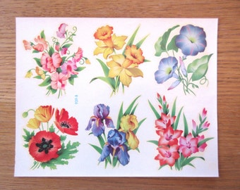 Vintage decals, Meyercord decals, flower decals, daffodil decal, poppy decal, morning glory decal, iris decal, crafting transfers