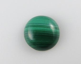 Malachite - Round Cabochon, 16.30 cts - 16x16 (M179)