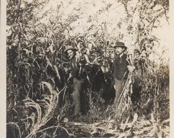 vintage photo 1919 Mustache Men Hold Cornstalks Maize Field Square Photo