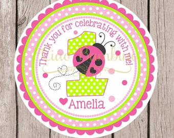 Pink Ladybug Birthday Party Favor Tags or Stickers / Personalized Hot Pink and Lime Green Ladybug Tags or Stickers with Any Age /  Set of 12