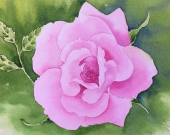 Painting of a Rose-Flower Art, Floral Painting-Watercolor Painting of a Perfect Pink Rose
