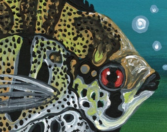 ACEO Angel Fish Marine Wildlife  Original Painting Art-Carla Smale