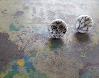 the wise owl earrings