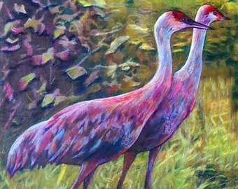 original art drawing crane pair color pencil drawing sandhill crane wall decor
