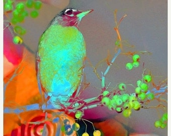 On Sale Fine Art Print, Altered Photograph, Home Decor, Modern Art, Bird, Tree. CouCou ChiCou...an 8x8 Giclee print