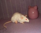 Albino Rat Plushie