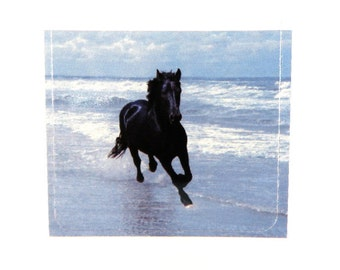 BOGO - 4 Sticker Decal, Black Stallion in the Surf, Scrapbooking, Decoupage, Collage, 38mm, 4 pc - Buy 1, Get 1 Free - no coupon