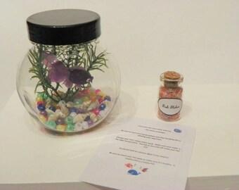 American Girl Pet set -  Fish aquarium, food, care sheet