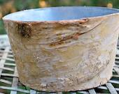 Birch Bark Vase - Birch Bark Vases - Rustic Wedding Decor - Wood Vase - Birch Vase