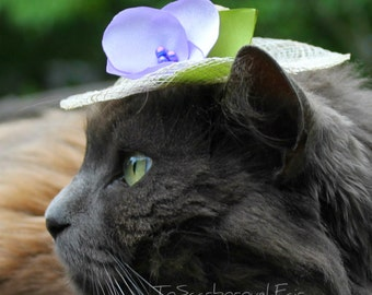Cat Hat - Spring Bonnet - Cat Bonnet - Spring Cat Hat