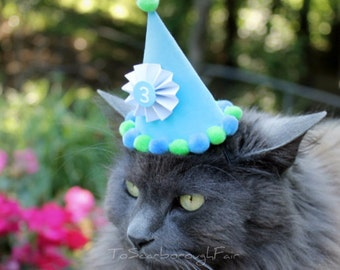 Birthday Hat for Cat or Small Dog - Customizable