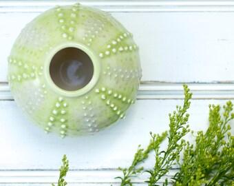 green urchin bud vase