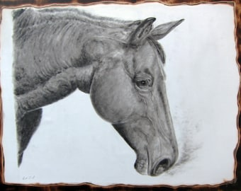 Candle Soot drawing. Stallion. Full size and mounted.