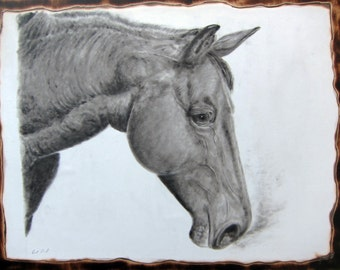 Candle Soot drawing. Stallion