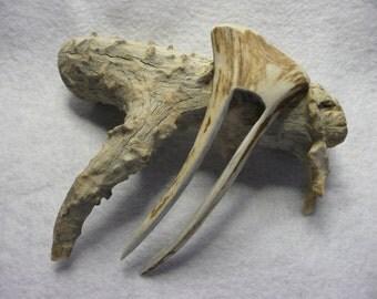 Sturdy Elk Antler Hand Carved Hair Fork  #19