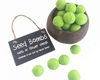 Green Seed Bombs - Herb or Flower Seeds - Fun Garden Gifts Make Great Party Favors for Weddings, Birthday Parties, Eco Friendly Earth Day