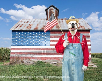 Yankee Doggie Dandy, original large photograph of white Boxer dog wearing vintage clothes and waving flag in front of old barn