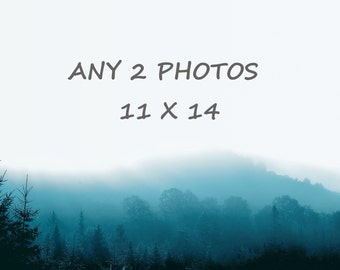 Order any 2 photos 11 x 14, you choose, customized order of any 2 photographs of your choice, 15% off
