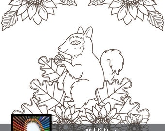 Squirrel Coloring Page~Digital Stamp~Adult Coloring~Printable~HLRDesigns~Rabbits and Dafadils