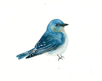 MOUNTAIN BLUEBIRD Original watercolor painting 10x8inch
