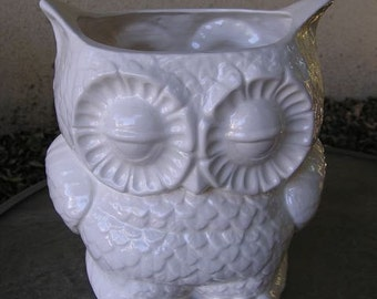 Glazed Drain Hole Added Garden Owl planter