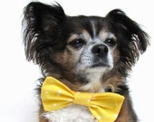 Pet Dog Bowtie Clip On Collar Yellow and White Polka Dots Size Large