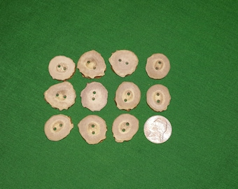 11 Antler Buttons lot 141