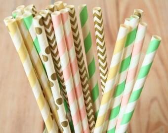 Mint Jubilee mix designs paper straws multipack