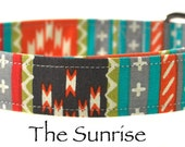 Multicolored Dog Color - The Sunrise