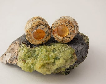 3/4'' Amber and Ocean/Sea life Fossil Plugs Gauges.